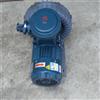 EX-G-2/1.5KW加油站油气回收设备用防爆漩涡鼓风机